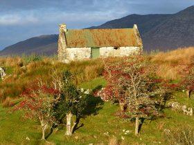 Gaeltacht Course Pastime Chonamara (55)